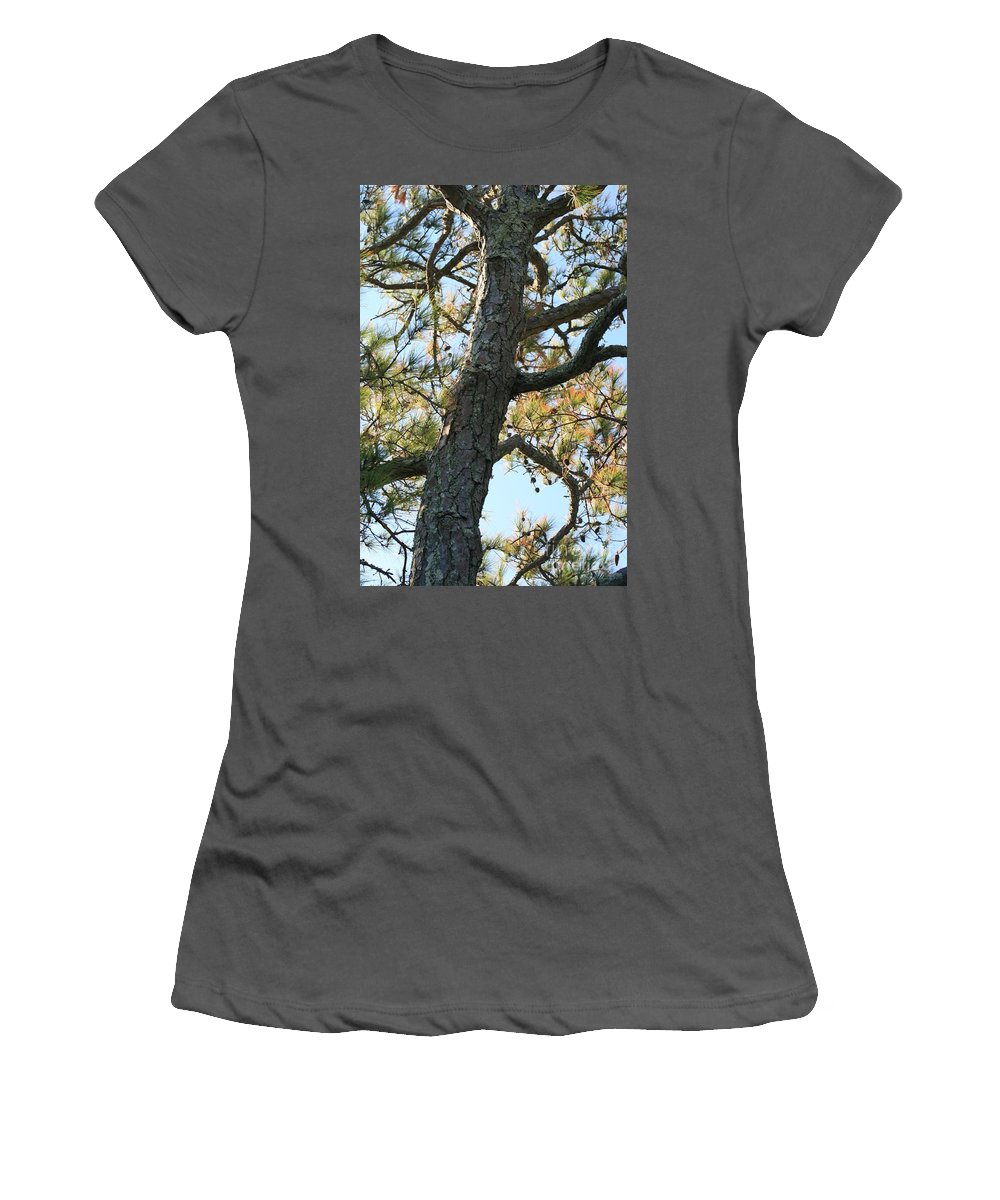 Tree Women's T-Shirt (Athletic Fit) featuring the photograph Bald Head Tree by Nadine Rippelmeyer