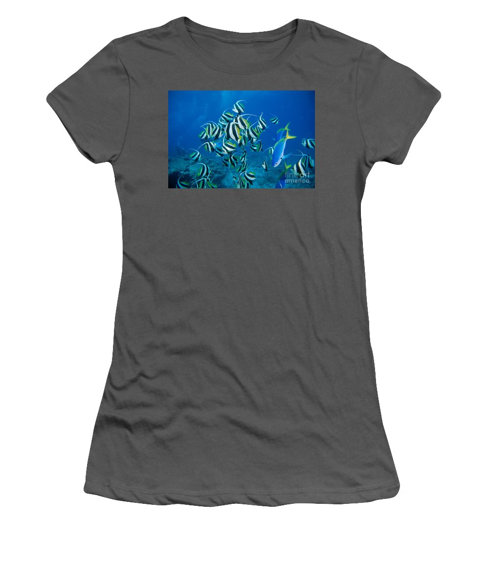 Acuminatus Women's T-Shirt (Athletic Fit) featuring the photograph Bannerfish School by Dave Fleetham - Printscapes