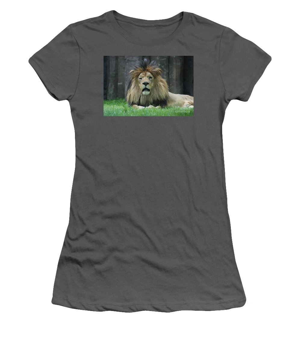 Lion Women's T-Shirt (Athletic Fit) featuring the photograph Beautiful Face Of A Male Lion With A Thick Fur Mane by DejaVu Designs
