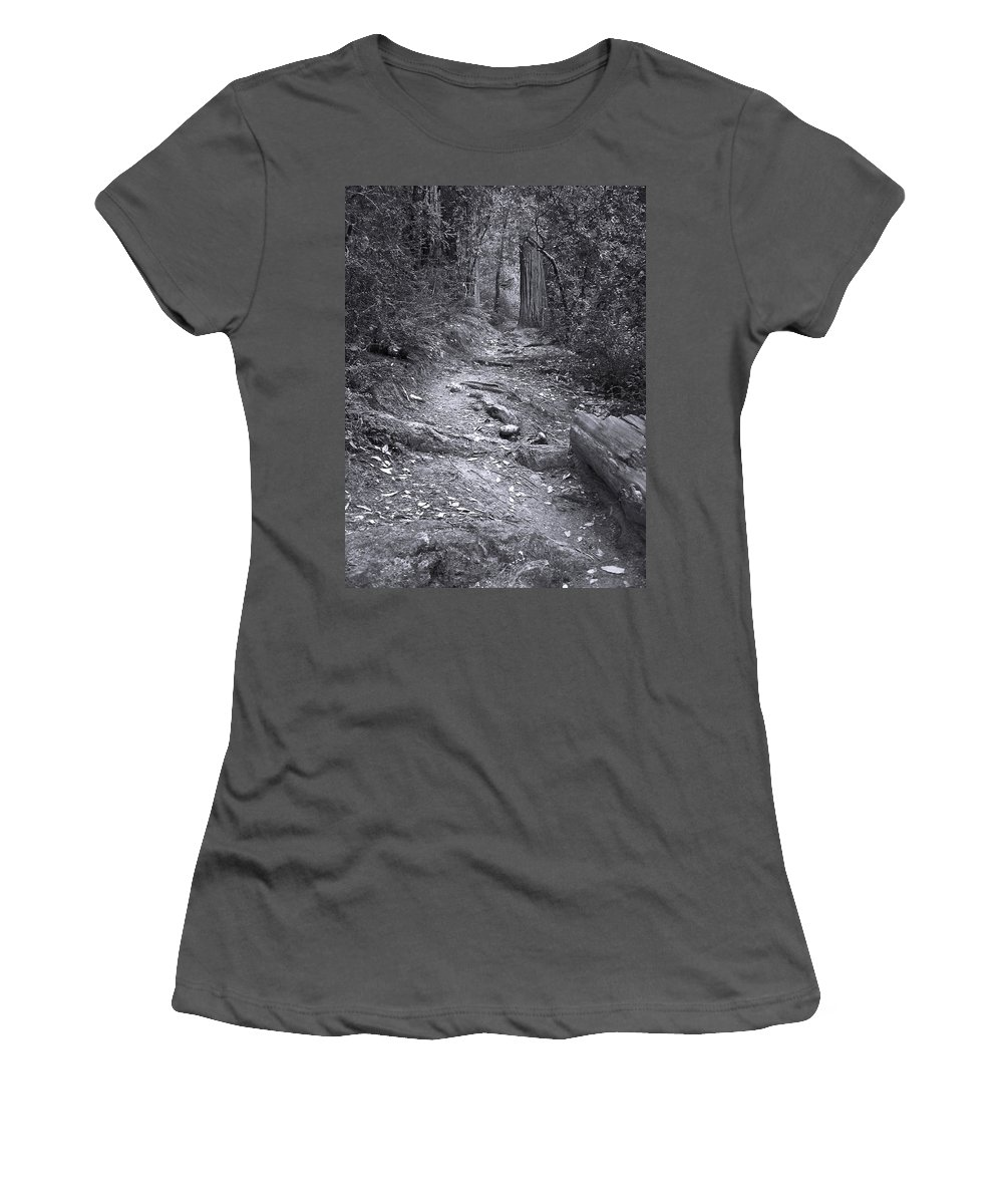 Landscape Women's T-Shirt (Athletic Fit) featuring the photograph Big Basin Redwoods Sp 1 by Karen W Meyer