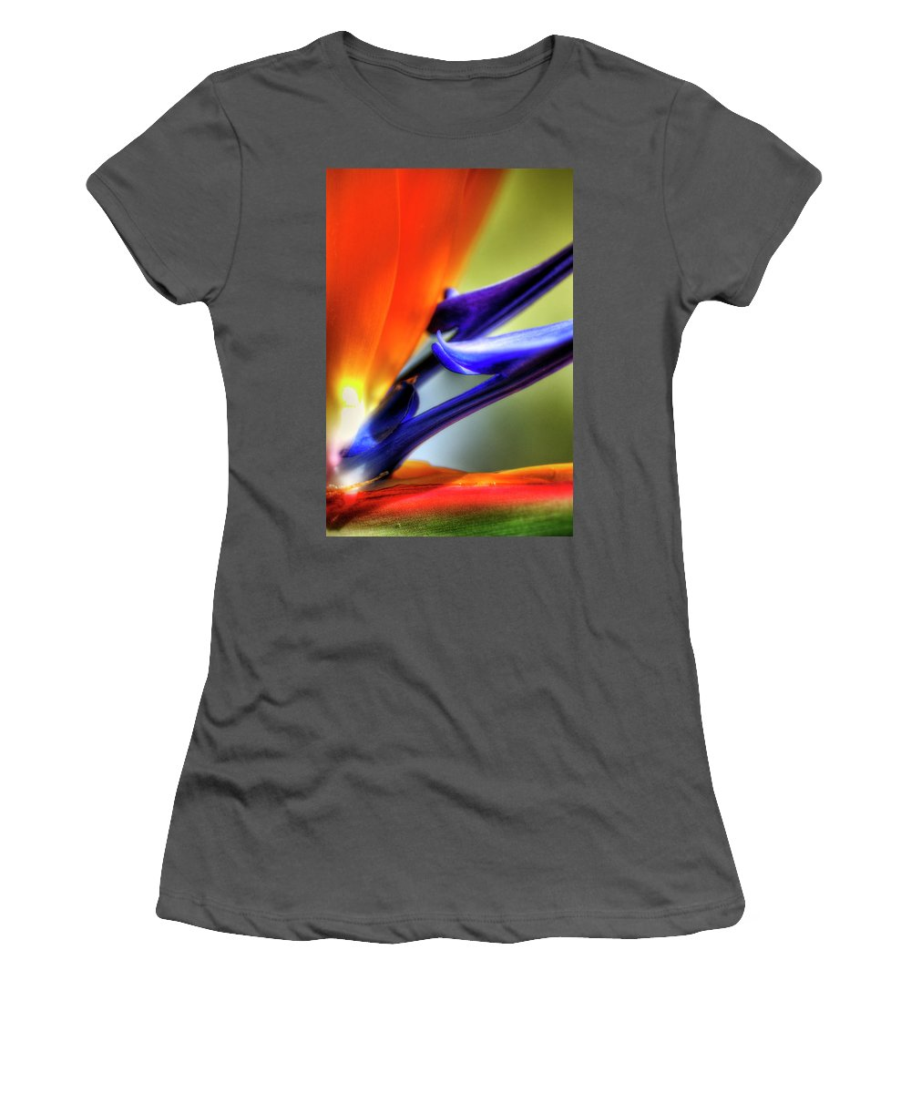Bird Of Paradise Women's T-Shirt (Athletic Fit) featuring the photograph Bird Of Paradise by Saija Lehtonen
