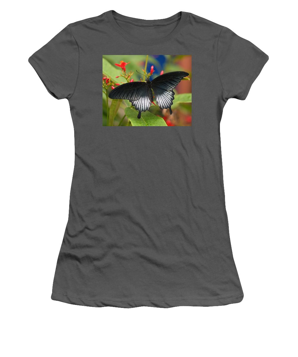 Butterfly Women's T-Shirt (Athletic Fit) featuring the photograph Black Beauty by Gaby Swanson