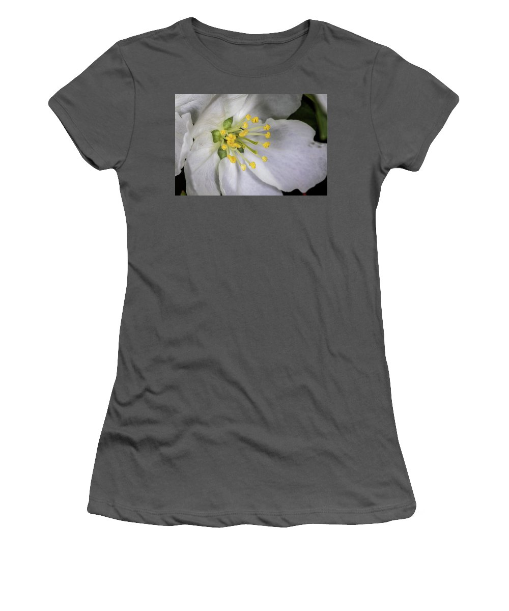 Jay Stockhaus Women's T-Shirt (Athletic Fit) featuring the photograph Bloom by Jay Stockhaus