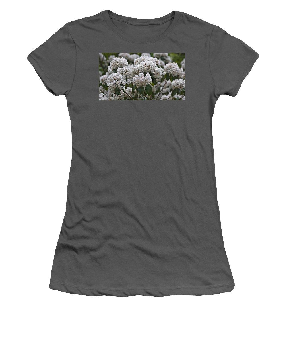 Kalmia Women's T-Shirt (Athletic Fit) featuring the photograph Blue Ridge Mountain Laurel by Teresa Mucha