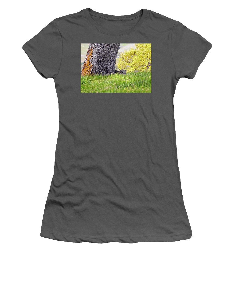 Landscape Women's T-Shirt (Athletic Fit) featuring the photograph Bobcat Watch by Karen W Meyer