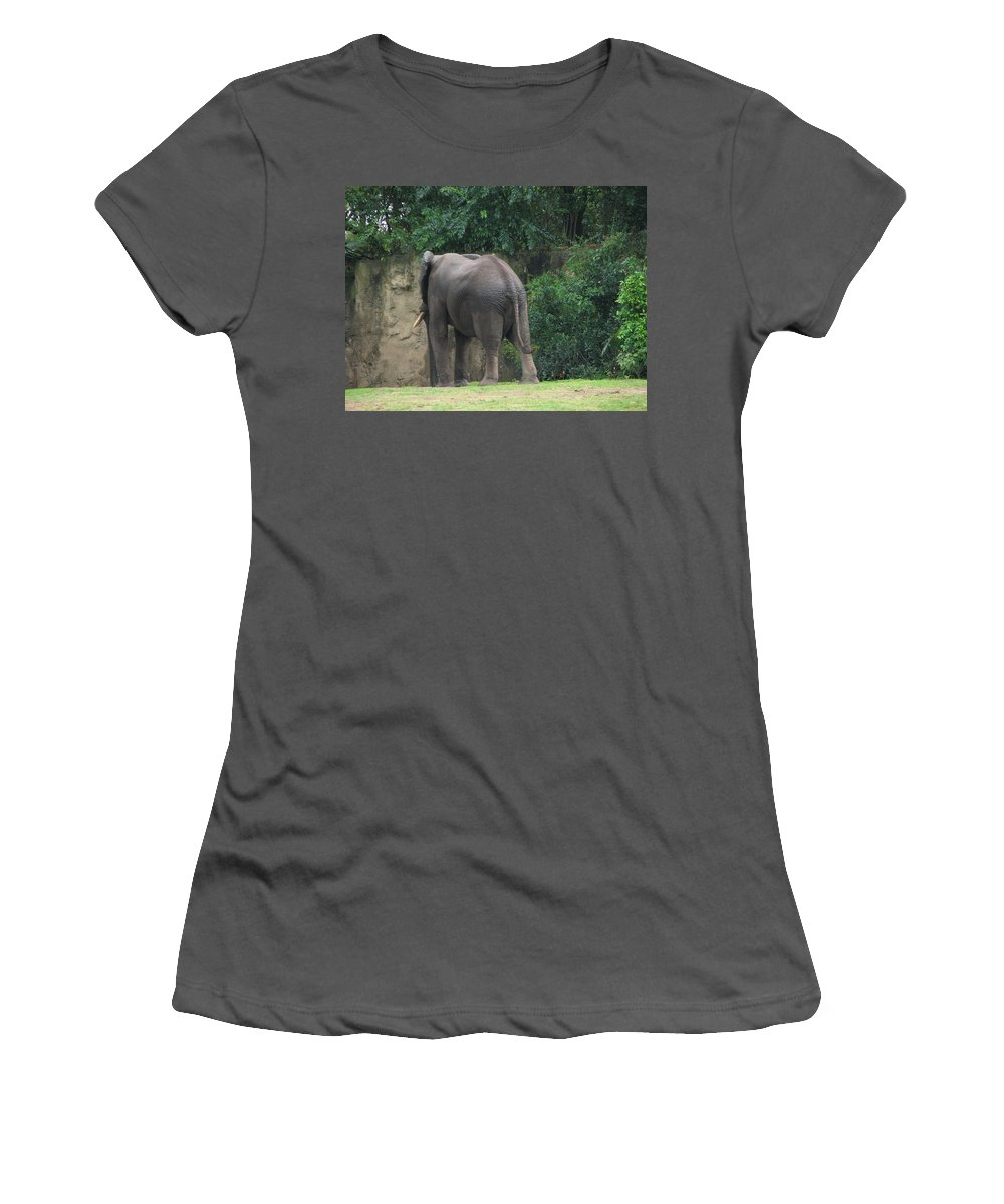 Elephant Women's T-Shirt (Athletic Fit) featuring the photograph Body Language II by Stacey May