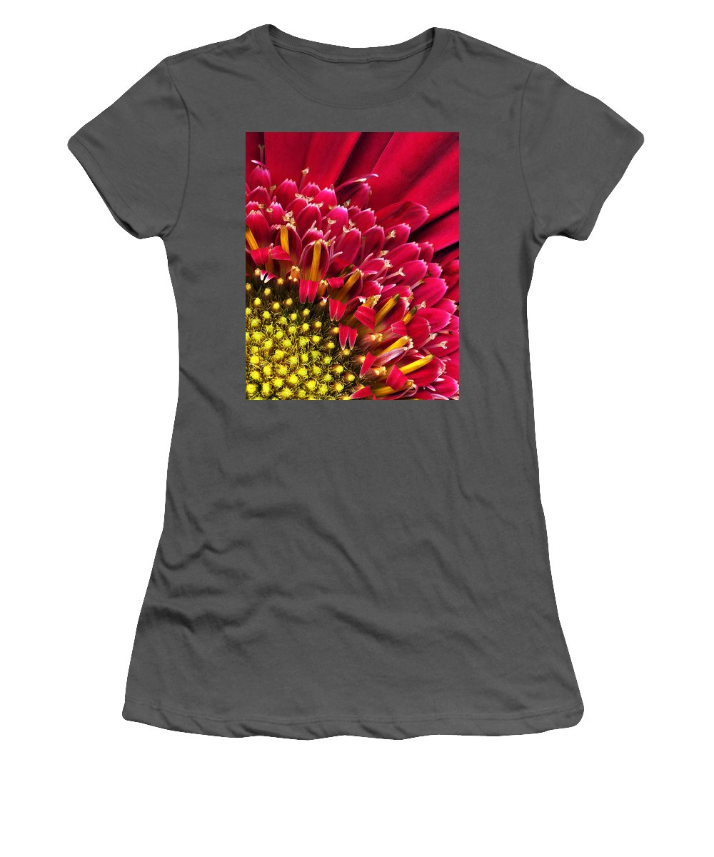 Flower Women's T-Shirt (Athletic Fit) featuring the photograph Bright Red Gerbera Daisy by Marilyn Hunt