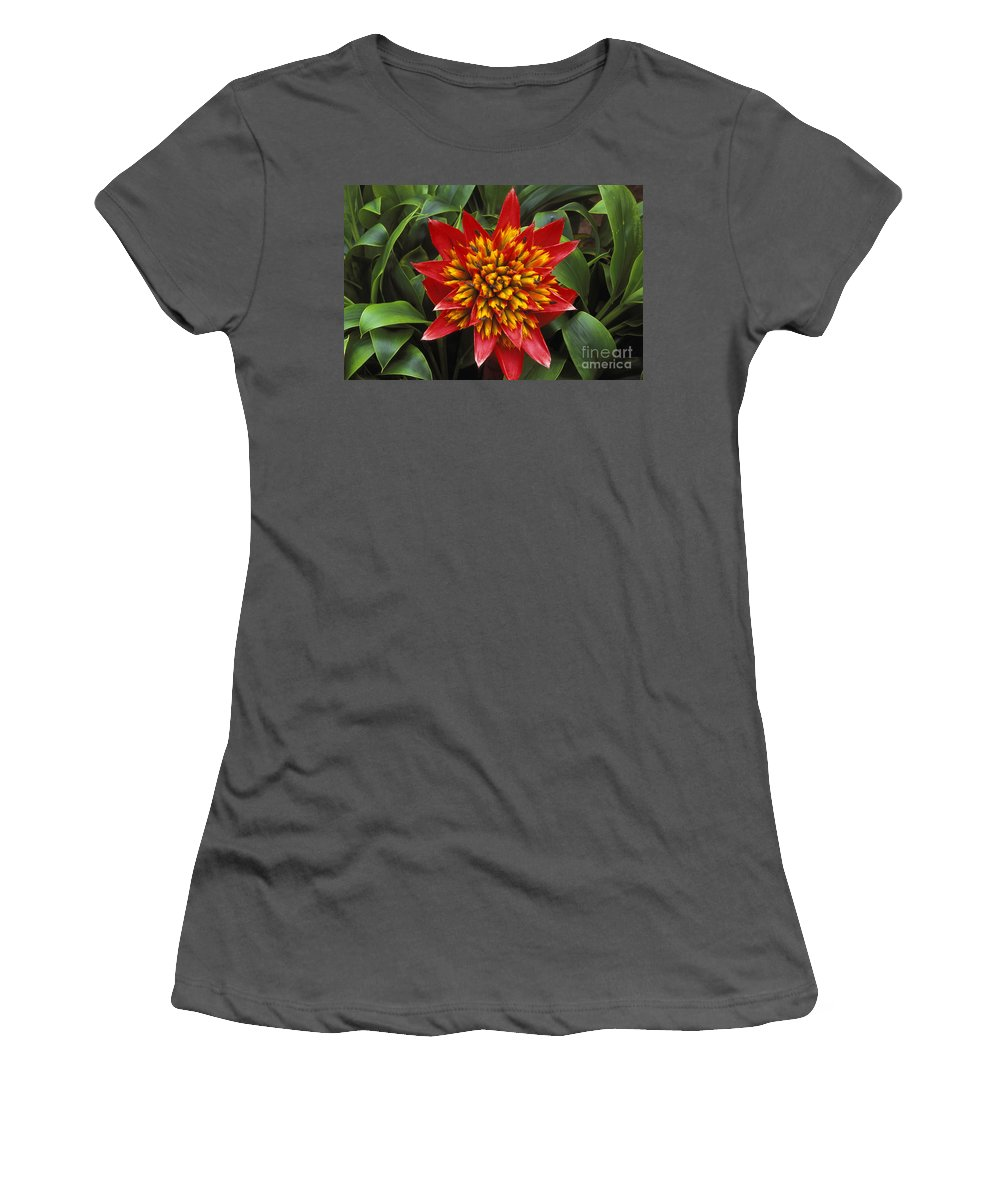 Attractive Women's T-Shirt (Athletic Fit) featuring the photograph Bromeliad Blooming by Peter French - Printscapes