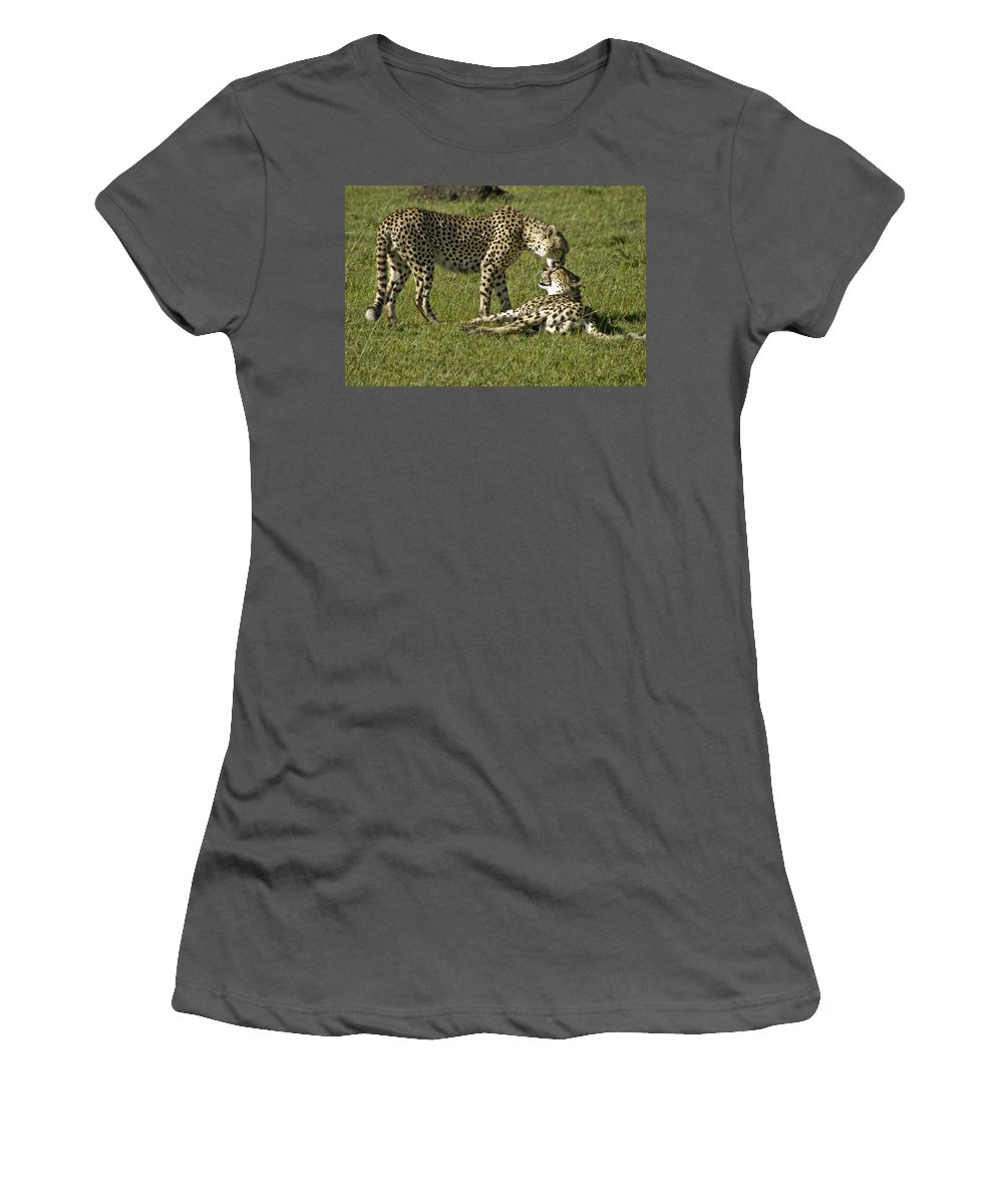 Africa Women's T-Shirt (Athletic Fit) featuring the photograph Brotherly Love by Michele Burgess