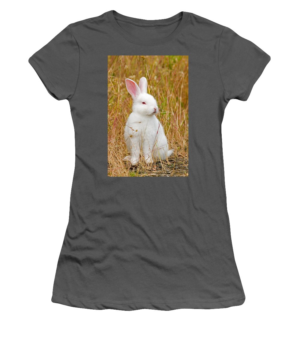 Rabbit Women's T-Shirt (Athletic Fit) featuring the photograph Bunny by Randall Ingalls