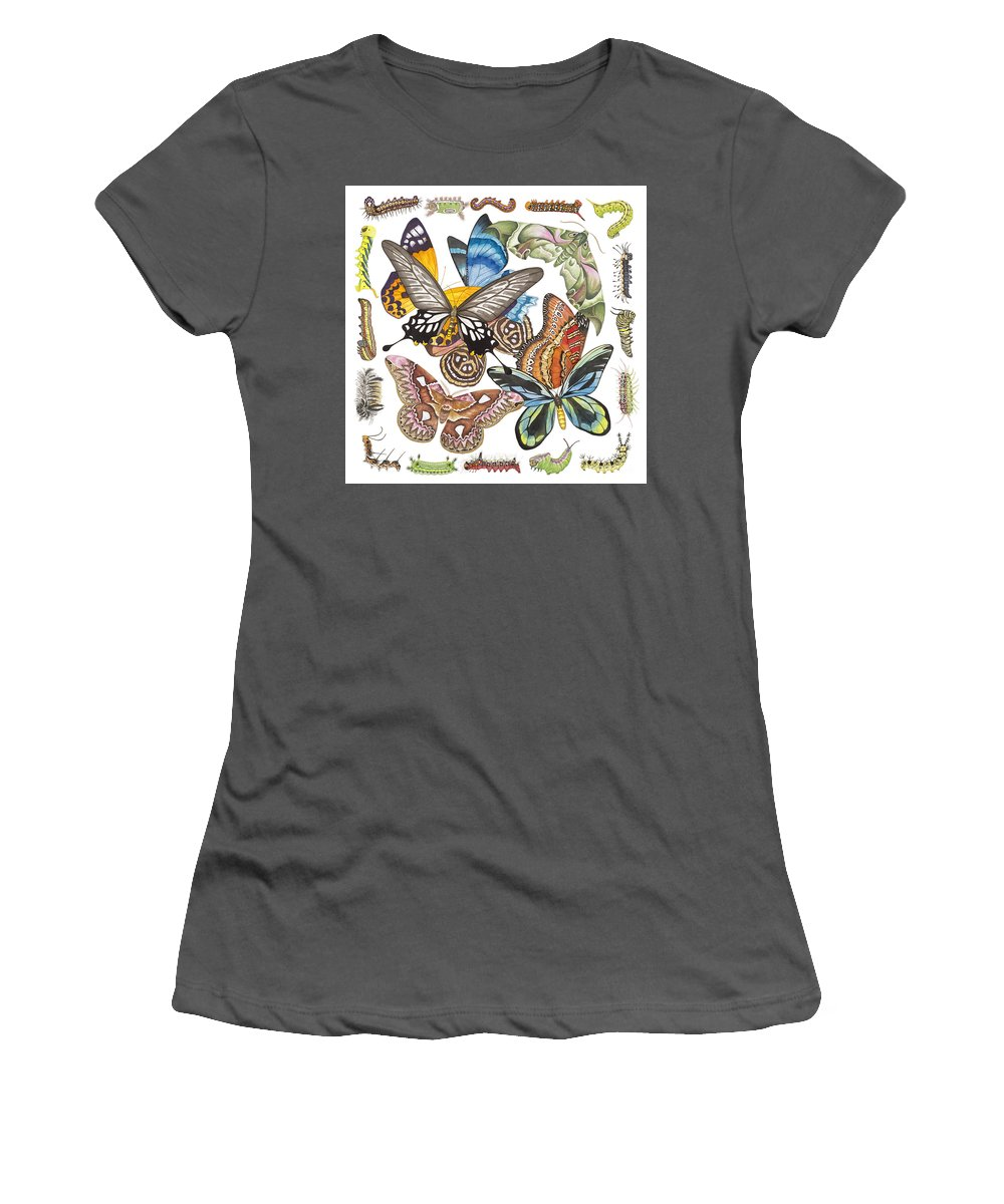 Butterflies Women's T-Shirt (Athletic Fit) featuring the painting Butterflies Moths Caterpillars by Lucy Arnold
