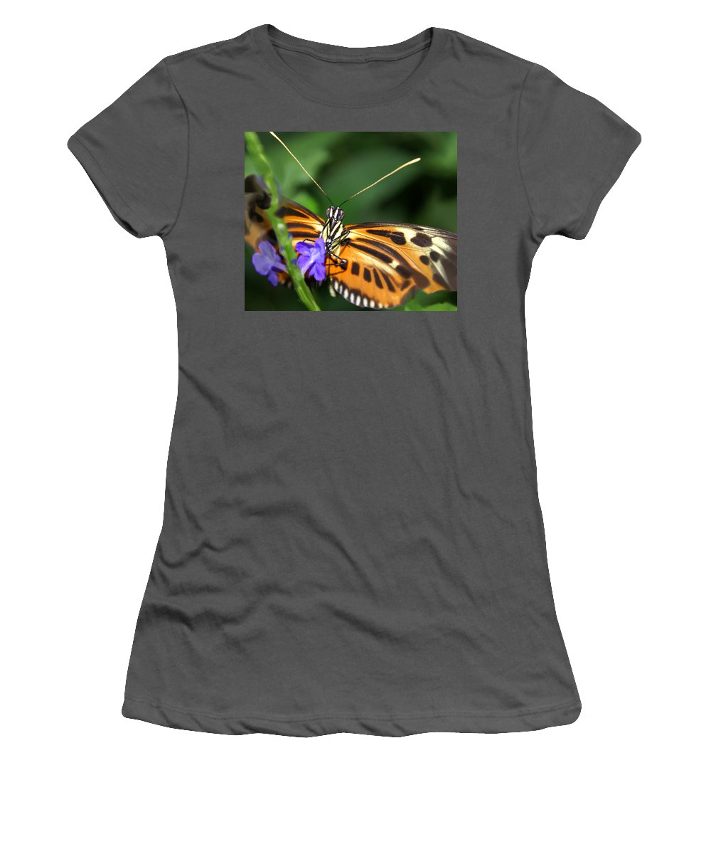 Butterfly Women's T-Shirt (Athletic Fit) featuring the photograph Butterfly 2 Eucides Isabella by Heather Coen