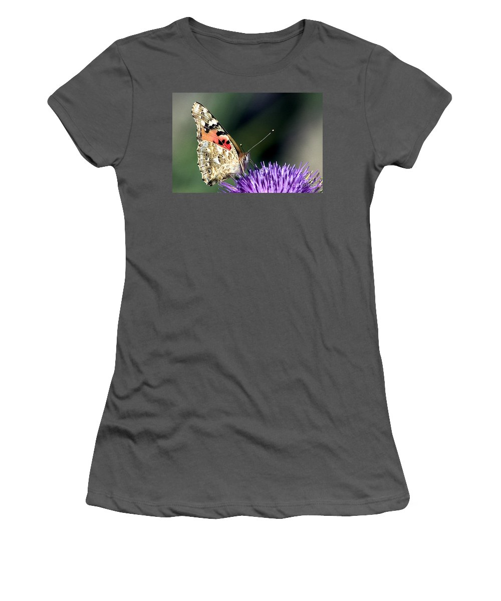 Butterfly Women's T-Shirt (Athletic Fit) featuring the photograph butterfly on a Silybum marianum I by Nahum Budin