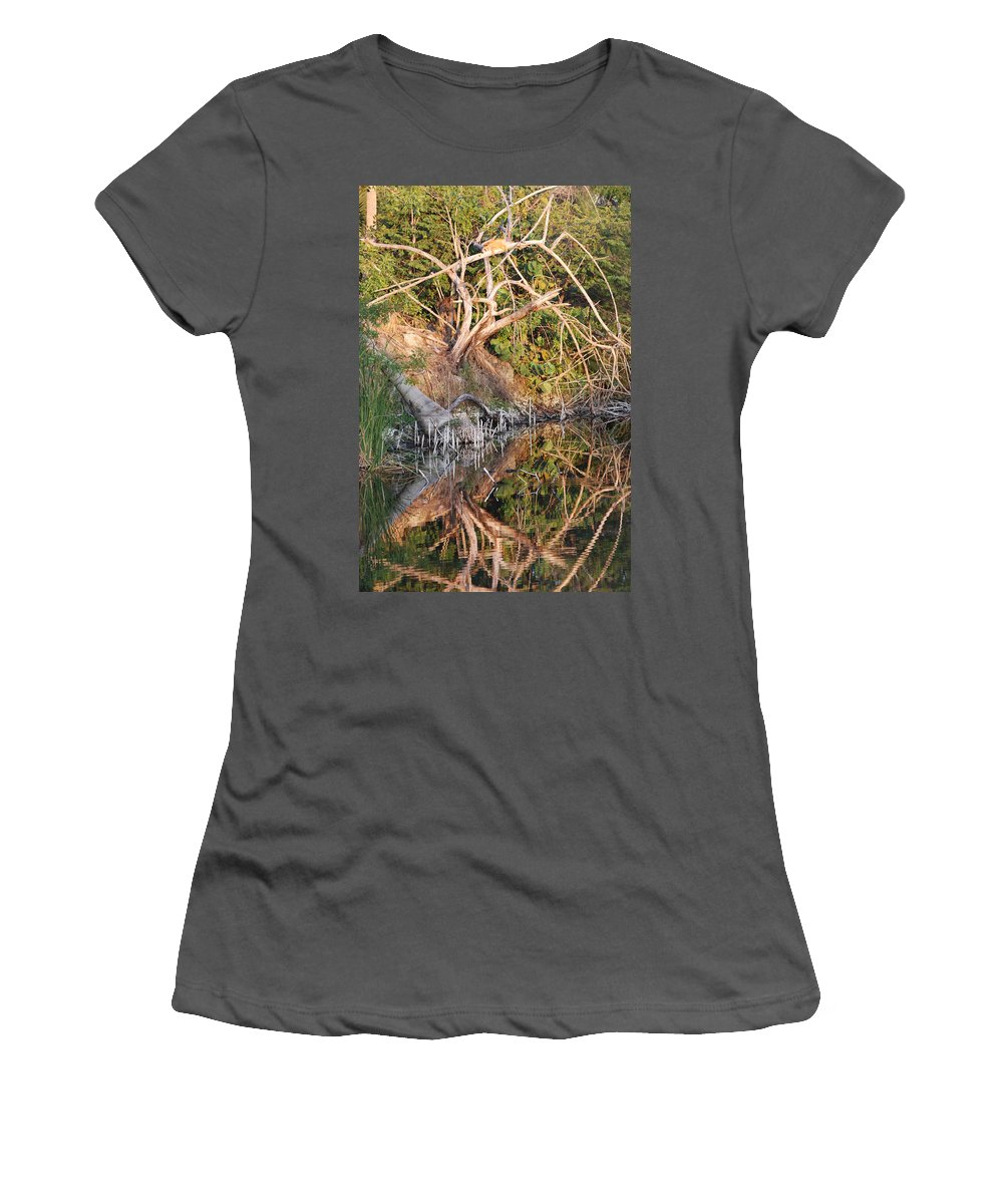 Iguana Women's T-Shirt (Athletic Fit) featuring the photograph Chilling Iguana by Rob Hans