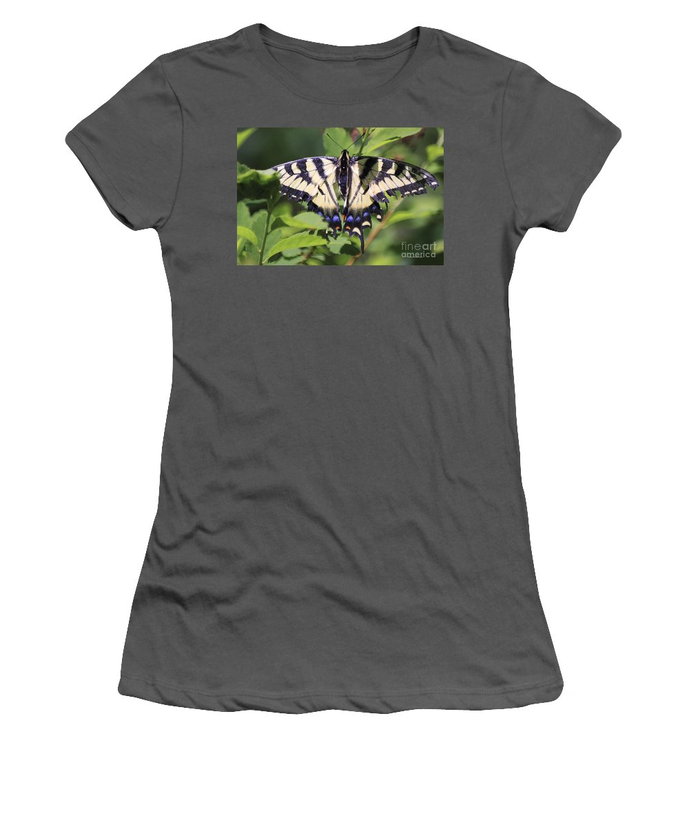 Butterfly Women's T-Shirt (Athletic Fit) featuring the photograph Common Yellow Swallowtail by Deborah Benoit