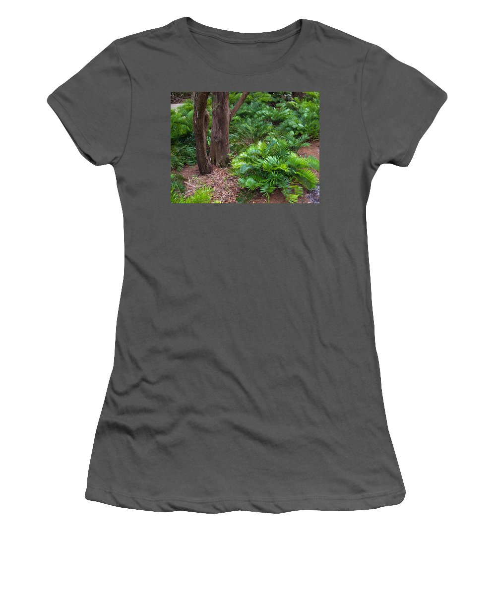 Florida; Coontie; Zamia; Integrifolia; Arrowroot; Indian; Bread; Breadroot; Plant; Rare; Wild; Prote Women's T-Shirt (Athletic Fit) featuring the photograph Coontie Florida Arrowroot Or Indian Breadroot by Allan Hughes