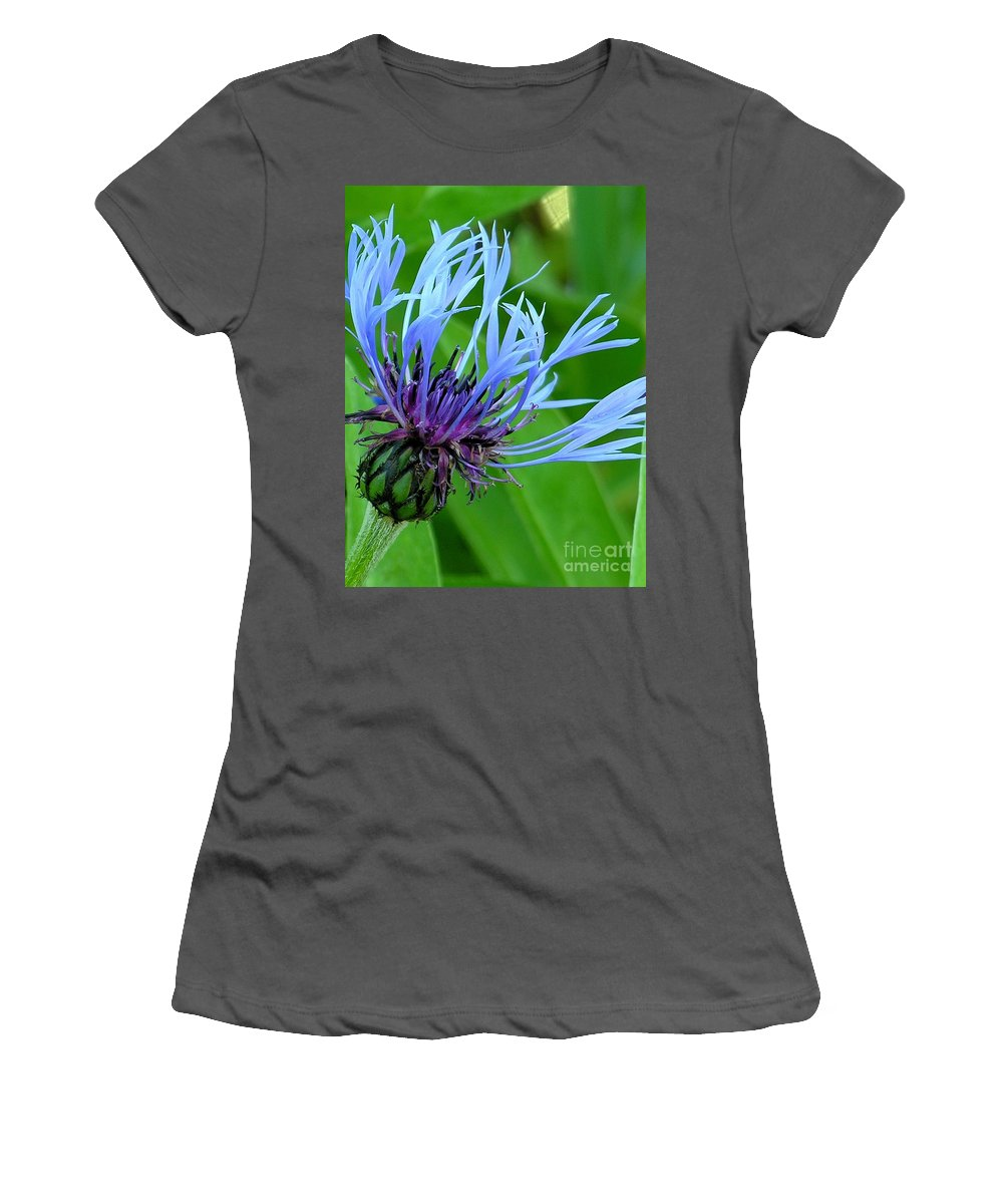 Blue Women's T-Shirt (Athletic Fit) featuring the photograph Cornflower Centaurea Montana by Diane Greco-Lesser