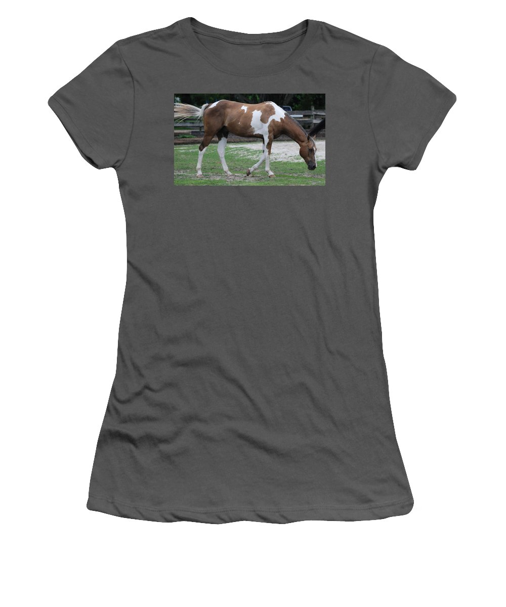 Horse Women's T-Shirt (Athletic Fit) featuring the photograph Cow Spotted Horse by Rob Hans