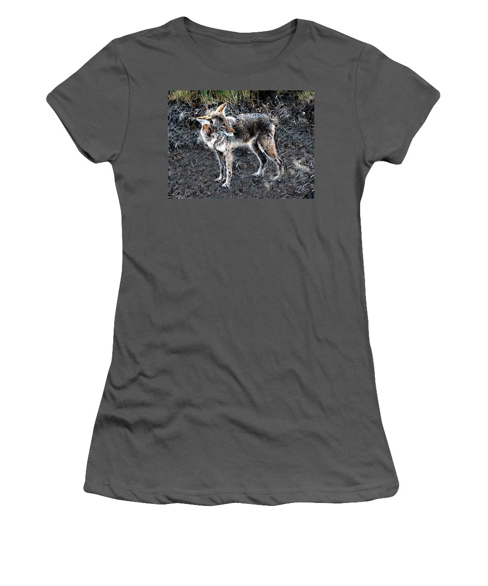 Coyote Women's T-Shirt (Athletic Fit) featuring the painting Coyote Waits by David Lee Thompson