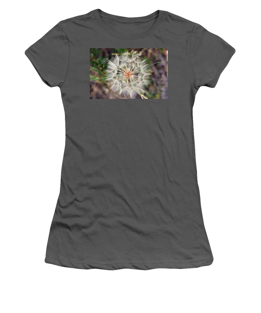 Dandelion Women's T-Shirt (Athletic Fit) featuring the photograph Dandelion Fuzz by Marilyn Hunt