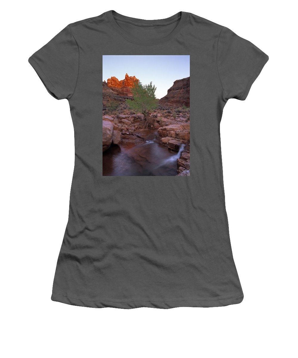 Dark Canyon Wilderness Women's T-Shirt (Athletic Fit) featuring the photograph Dark Canyon Creek by Leland D Howard