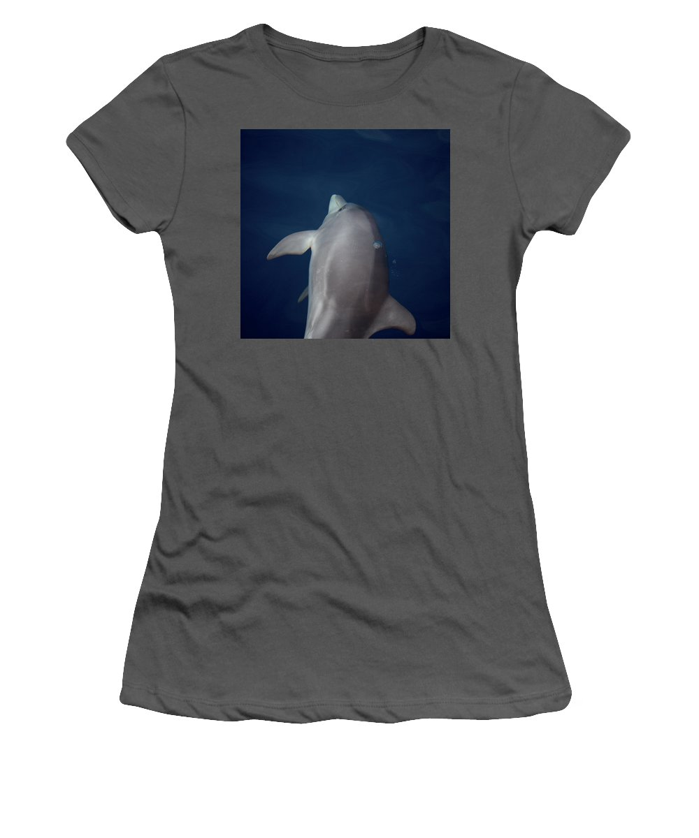 Valasretki Women's T-Shirt (Athletic Fit) featuring the photograph Delphin 8 by Jouko Lehto
