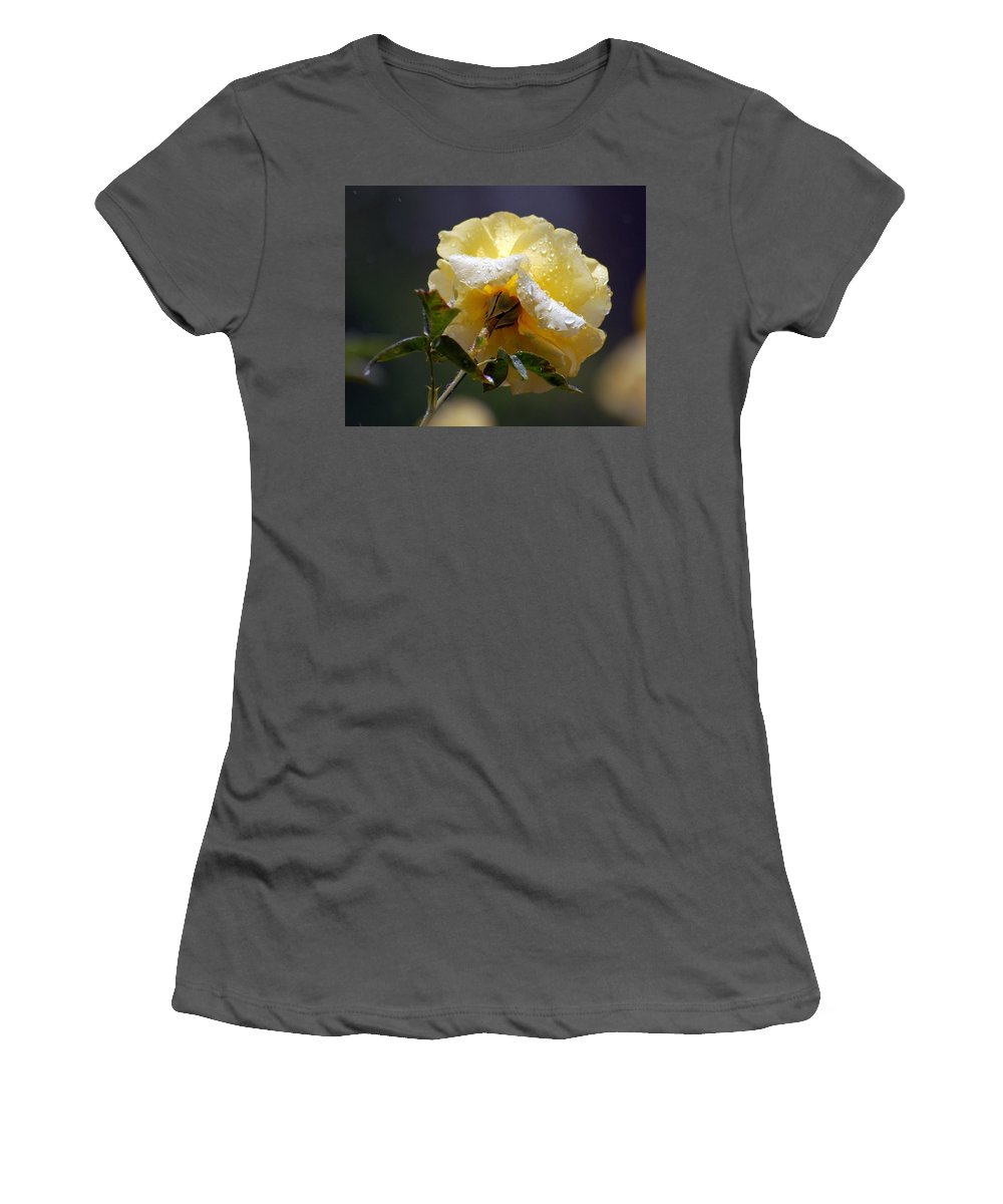 Flower Women's T-Shirt (Athletic Fit) featuring the photograph Dewy Yellow Rose 1 by Amy Fose