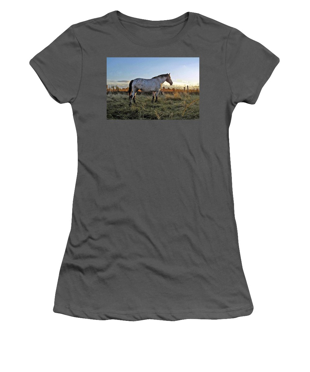 Appaloosa Women's T-Shirt (Athletic Fit) featuring the photograph Distant Thoughts by Susan Baker