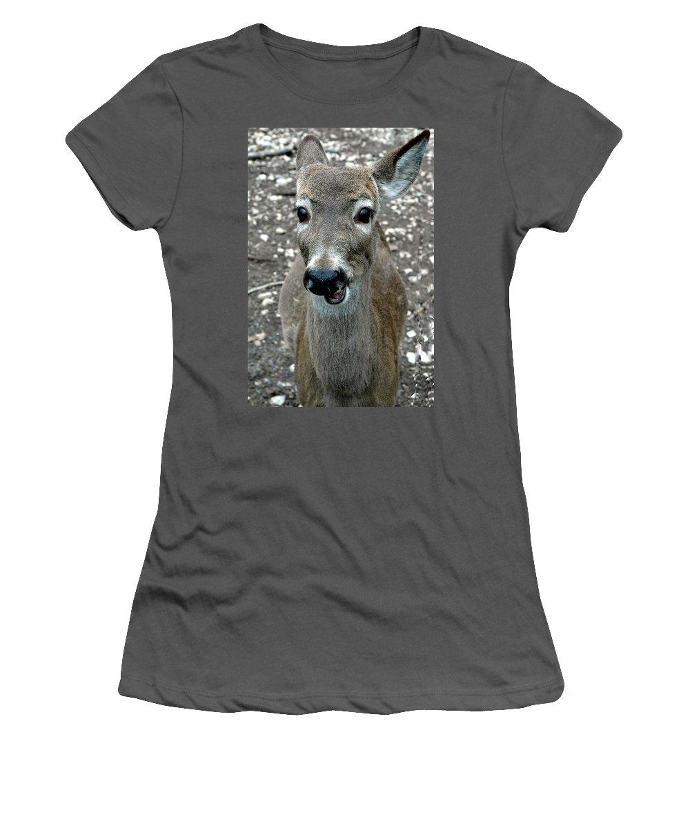 Usa Women's T-Shirt (Athletic Fit) featuring the photograph Doe Eyed Deer Talk by LeeAnn McLaneGoetz McLaneGoetzStudioLLCcom