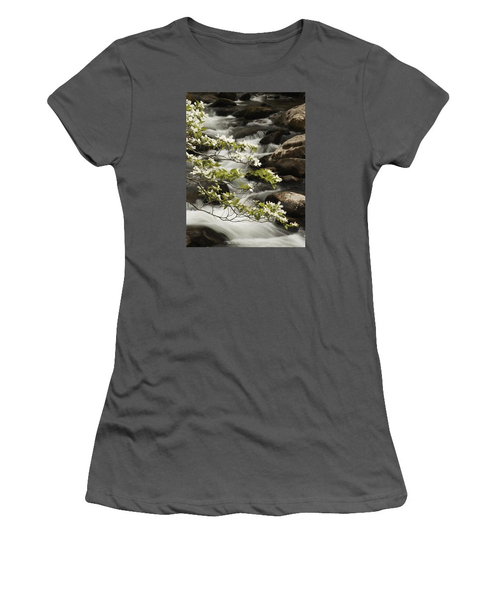 Dogwood Women's T-Shirt (Athletic Fit) featuring the photograph Dogwoods Over Cascades by Harold Stinnette