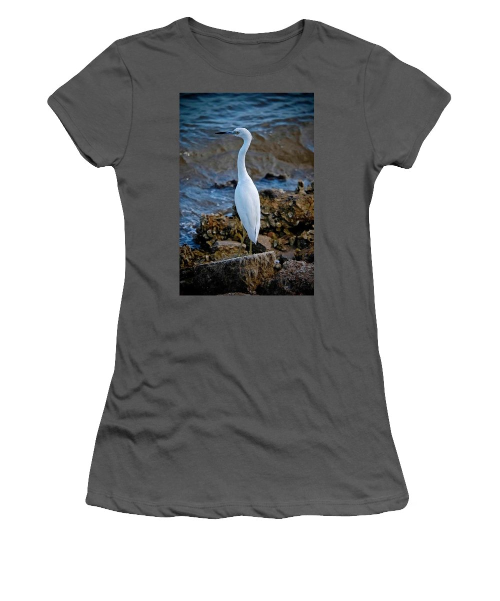 Egret Women's T-Shirt (Athletic Fit) featuring the photograph Eager Egret by DigiArt Diaries by Vicky B Fuller