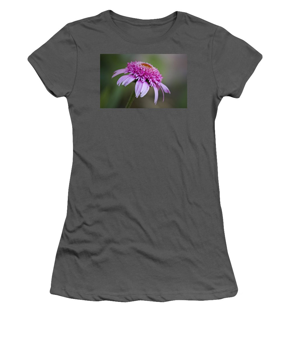 Pink Women's T-Shirt (Athletic Fit) featuring the photograph Echinacea Pink Double Delight by Teresa Mucha