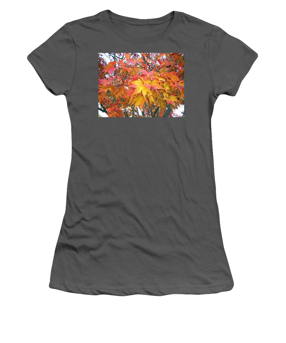 Fall Pictures Autumn Pictures Fall Leaves Painting Yellow Paintings Fall Colors Painting Greeting Card Painting Seasonal Painting Seasons Painting Botanical Painting Tree Painting Women's T-Shirt (Athletic Fit) featuring the photograph Fantasy Of Fall by Karin Dawn Kelshall- Best