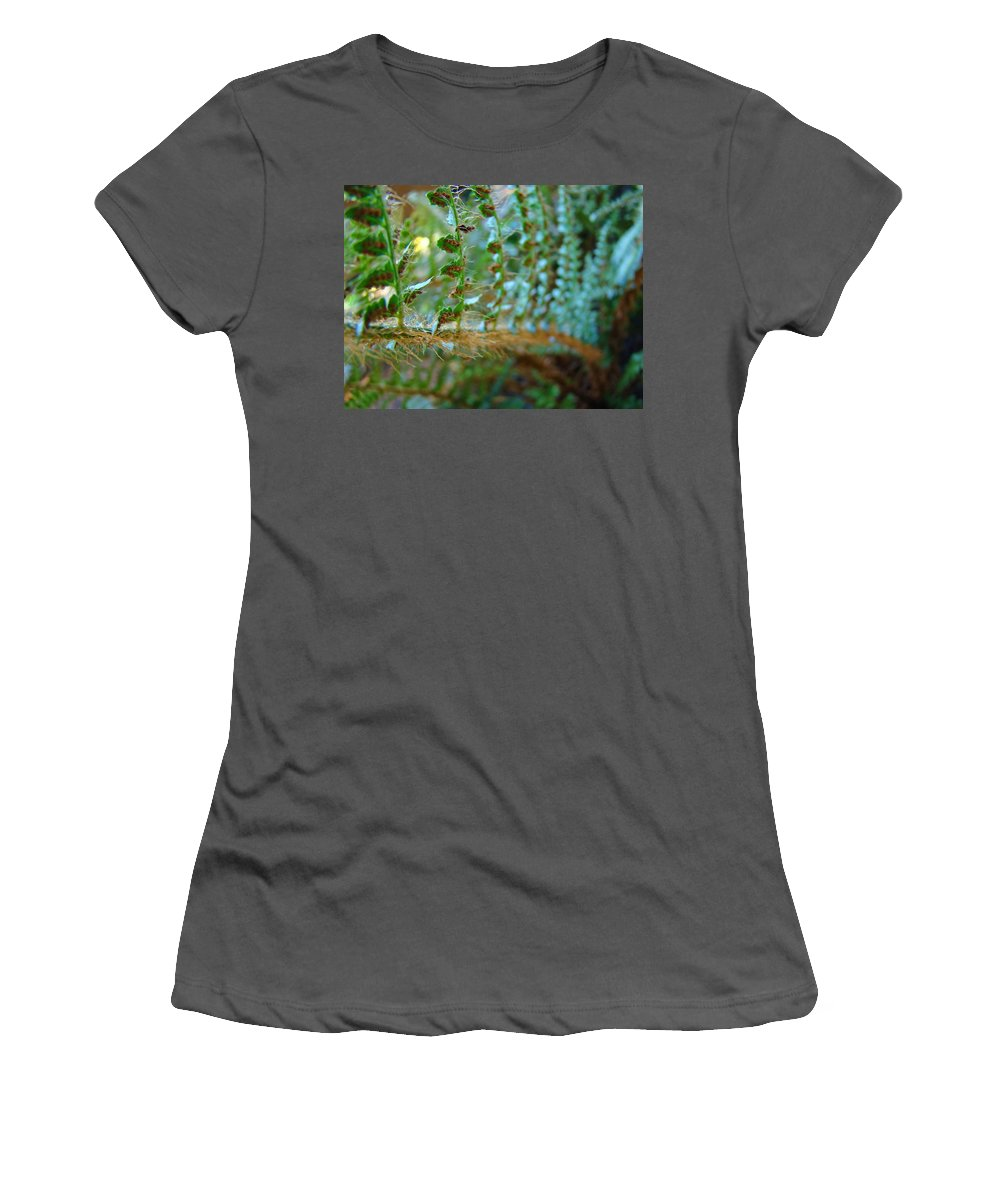 Fern Women's T-Shirt (Athletic Fit) featuring the photograph Fern Macro Forest Ferns Art Sunlit Giclee Prints Baslee Troutman by Baslee Troutman