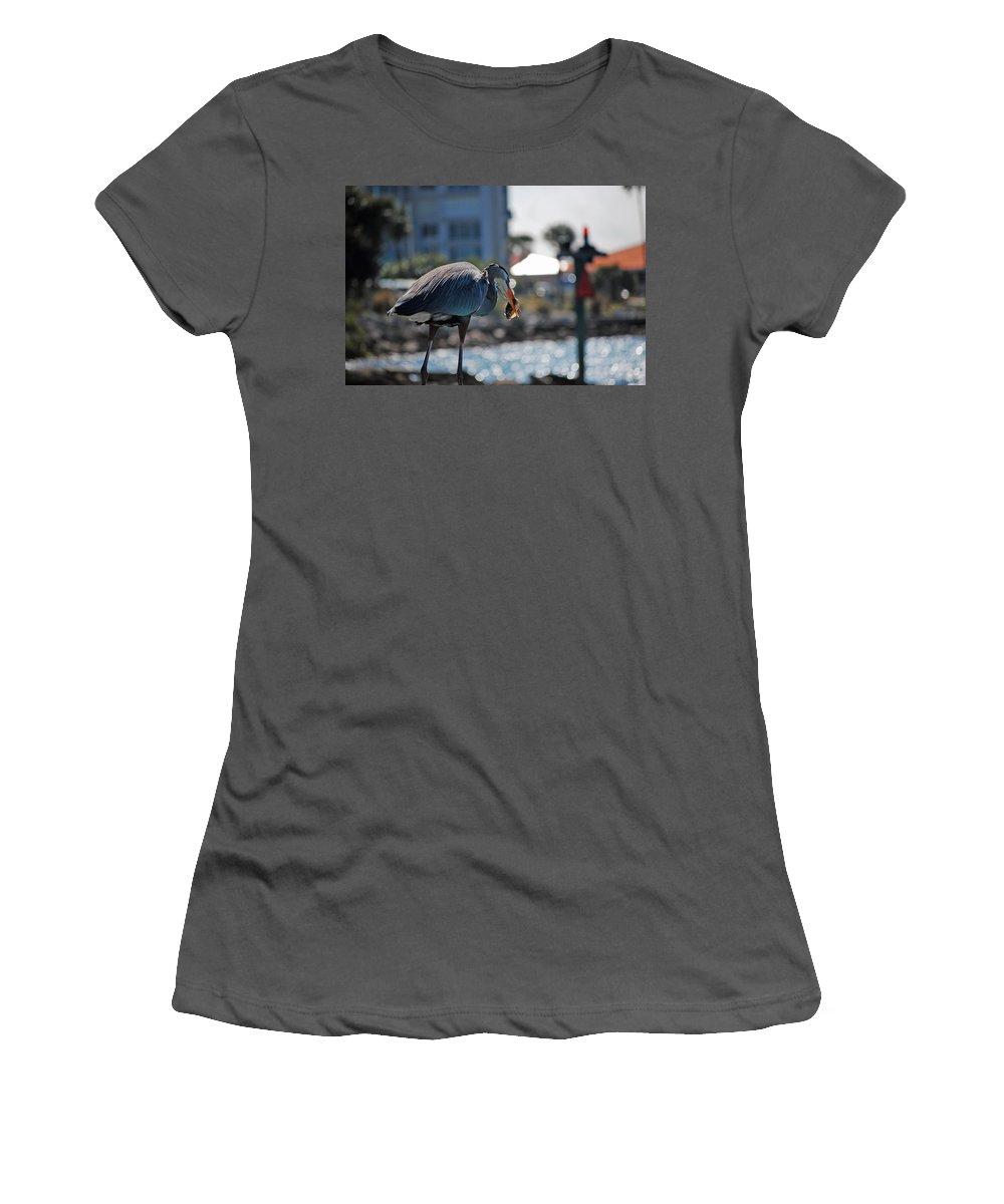 Gray Heron Women's T-Shirt (Athletic Fit) featuring the photograph Fishing by Robert Meanor