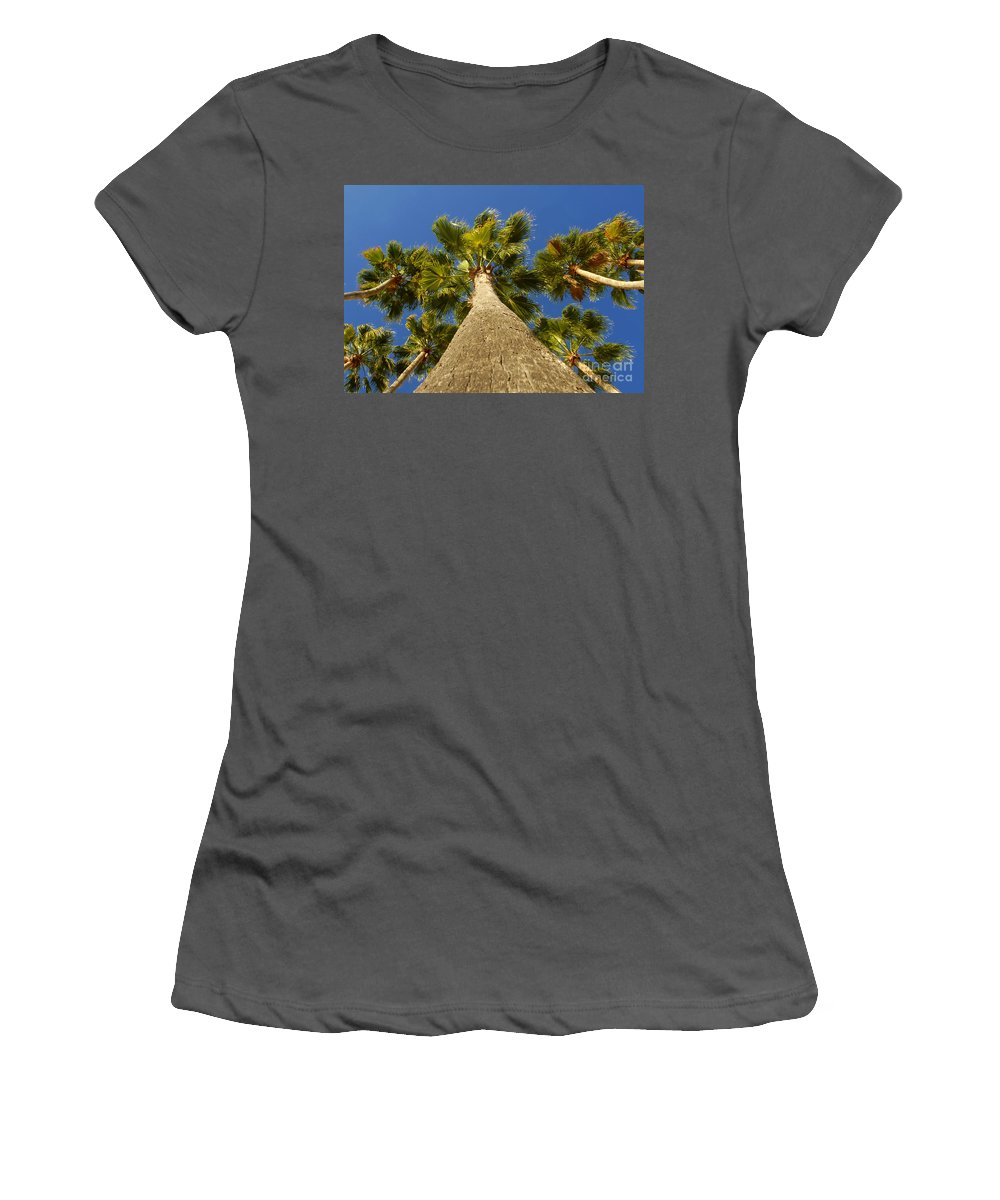Florida. Palm Trees. Tropical Women's T-Shirt (Athletic Fit) featuring the photograph Florida Palms by David Lee Thompson