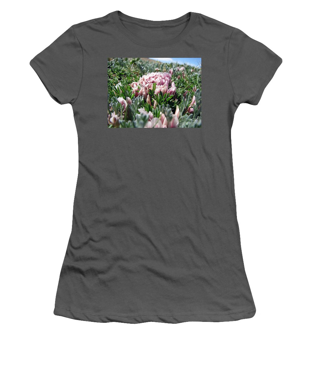 Flowers Women's T-Shirt (Athletic Fit) featuring the photograph Flowers In The Alpine Tundra by Amanda Barcon
