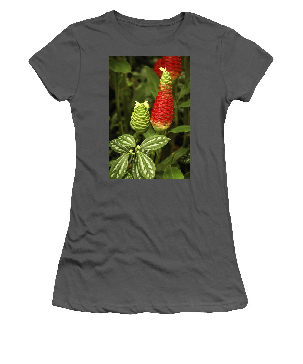 Red Pine Cone Ginger Lily Women's T-Shirt (Athletic Fit) featuring the photograph Fragrant Red by Carolyn Marshall