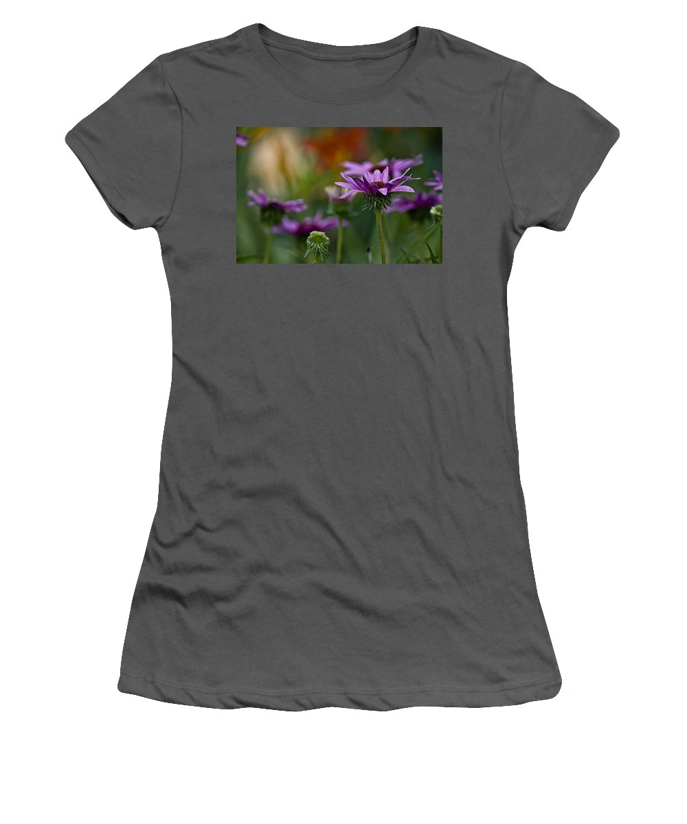 Echinacea Women's T-Shirt (Athletic Fit) featuring the photograph Garden Flowers 2 by Michael Cummings