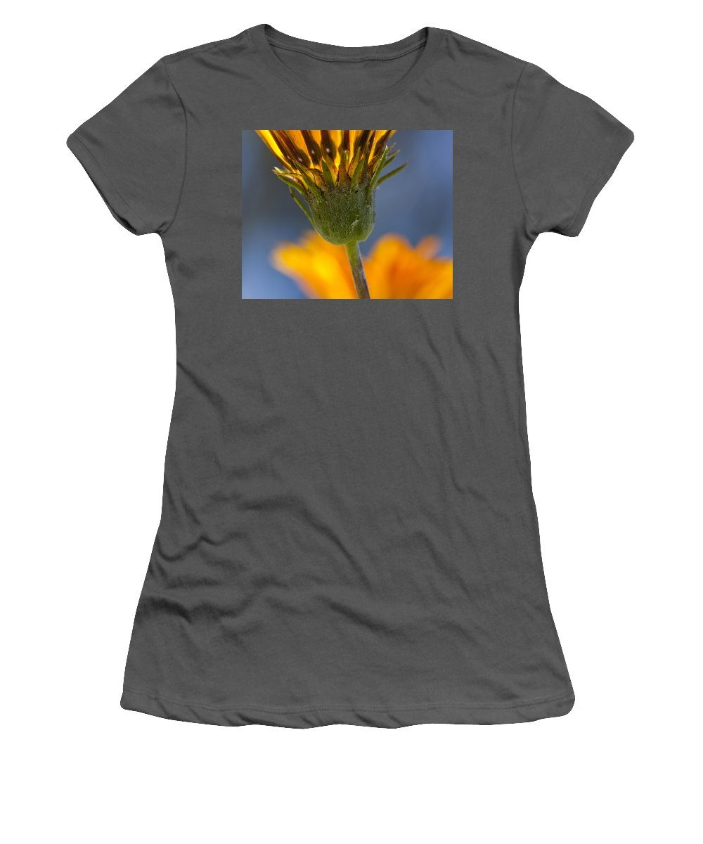 Flowers Women's T-Shirt (Athletic Fit) featuring the photograph Gerbera Daisy by Kelley King