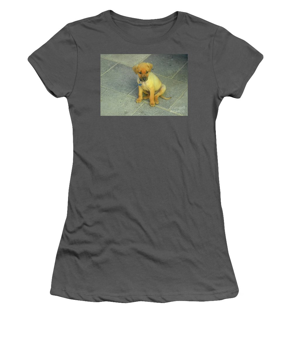 Cunucu Women's T-Shirt (Athletic Fit) featuring the photograph Golden Cunucu Puppy In Aruba by DejaVu Designs