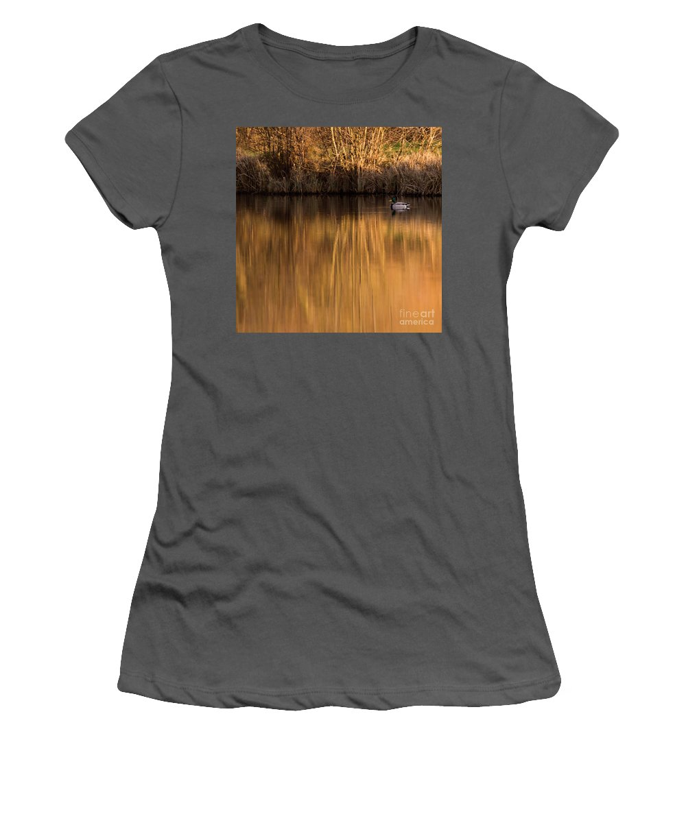 Gold Women's T-Shirt (Athletic Fit) featuring the photograph Golden Sunset by Angel Ciesniarska