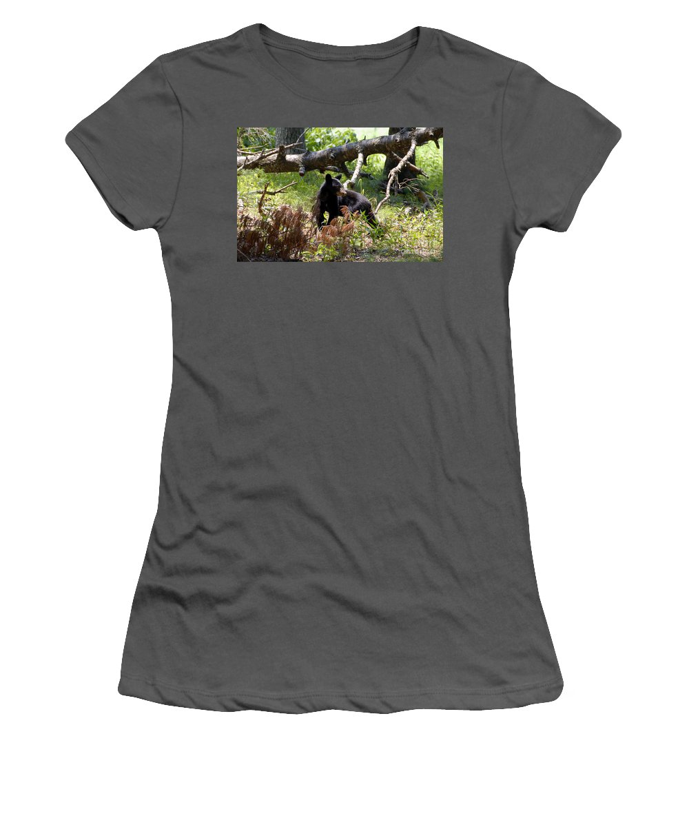 Bear Women's T-Shirt (Athletic Fit) featuring the photograph Great Smoky Mountain Bear by David Lee Thompson