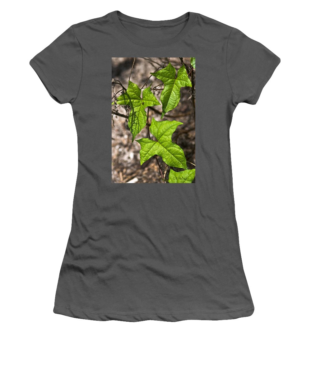 Green Women's T-Shirt (Athletic Fit) featuring the photograph Green Arrowheads by Christopher Holmes