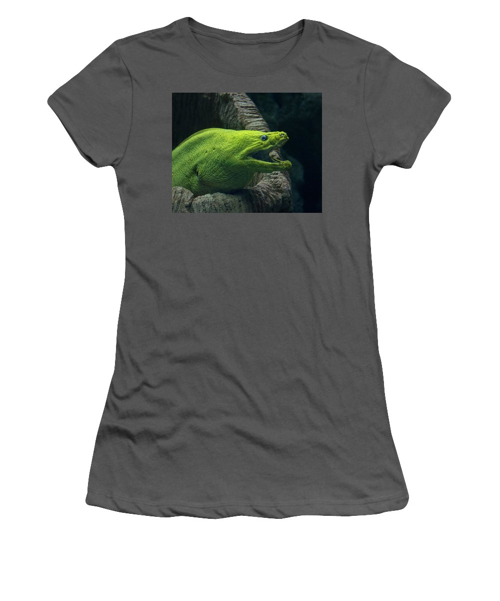Moray Women's T-Shirt (Athletic Fit) featuring the photograph Green Moray Eel by Mitch Spence