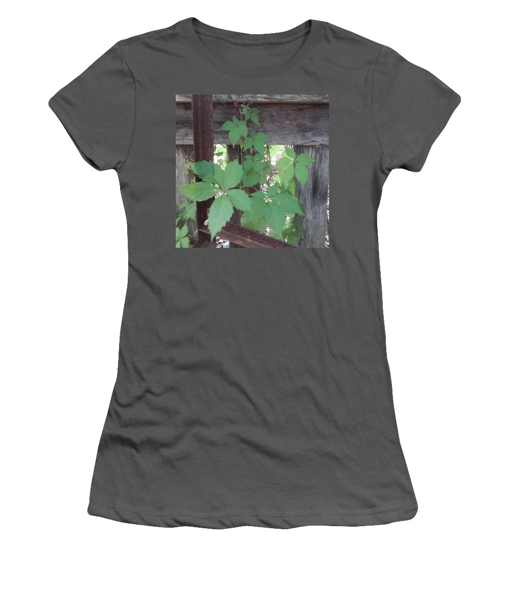 Barn Wood Fence Greenery Women's T-Shirt (Athletic Fit) featuring the photograph Greenery by Cindy New