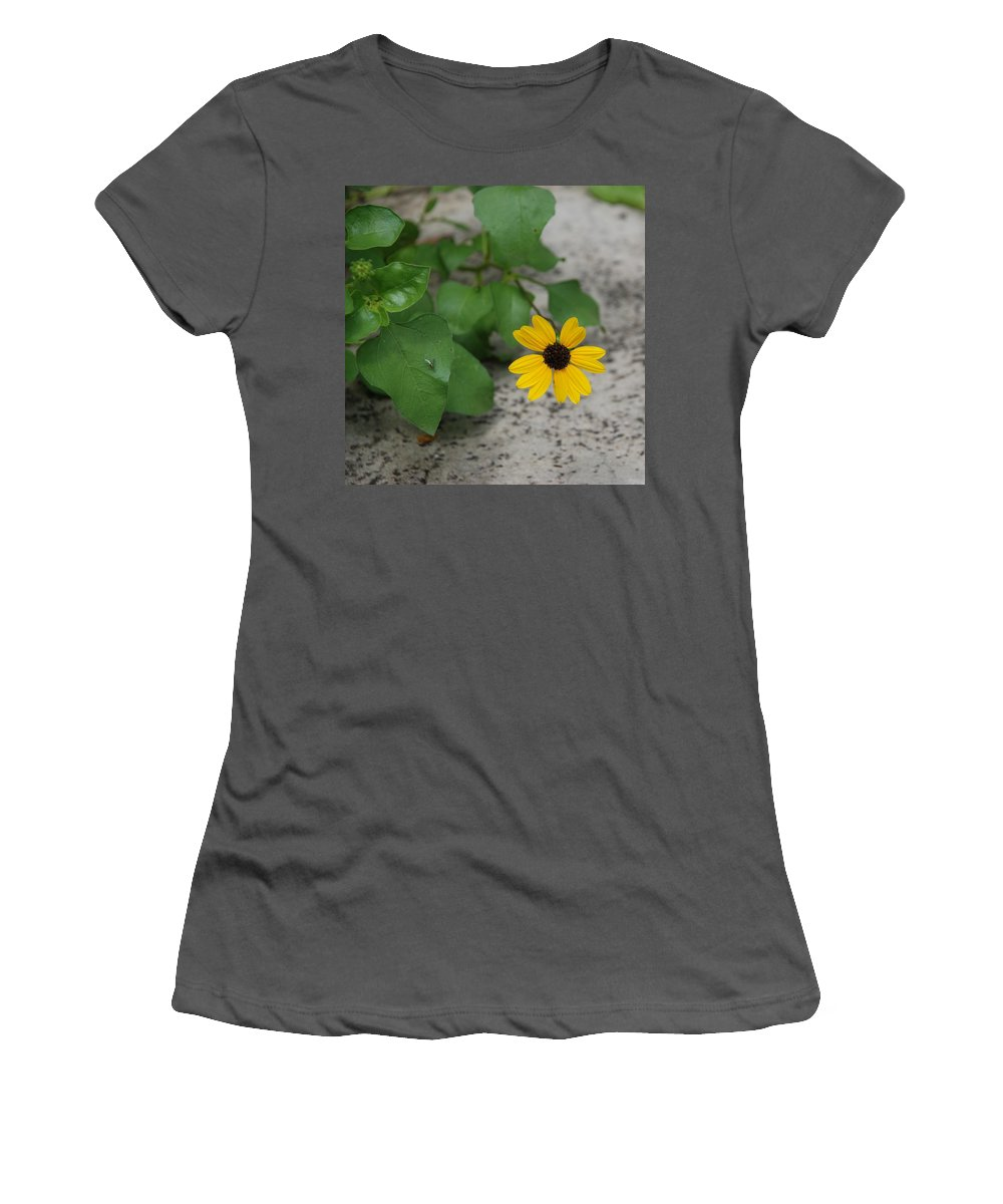 Macro Women's T-Shirt (Athletic Fit) featuring the photograph Grounded Sunflower by Rob Hans