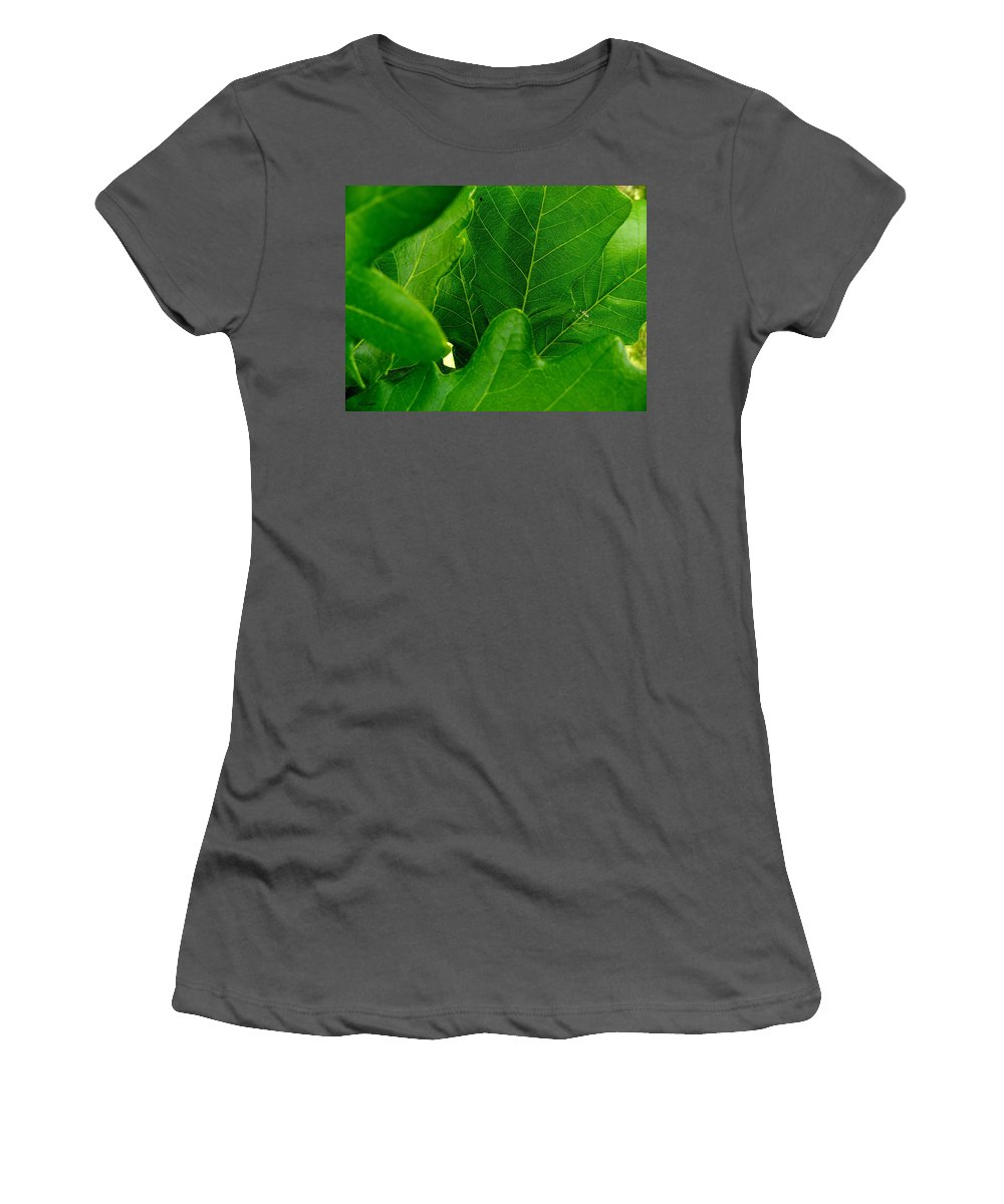Group Therapy Women's T-Shirt (Athletic Fit) featuring the photograph Group Therapy by Ed Smith