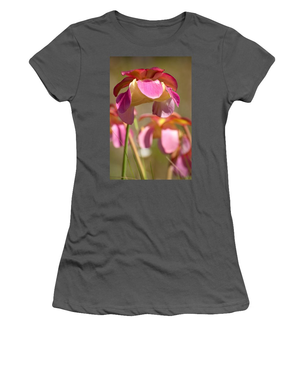 Pitcher Women's T-Shirt (Athletic Fit) featuring the photograph Gulf Purple Pitcher Plant by Rich Leighton