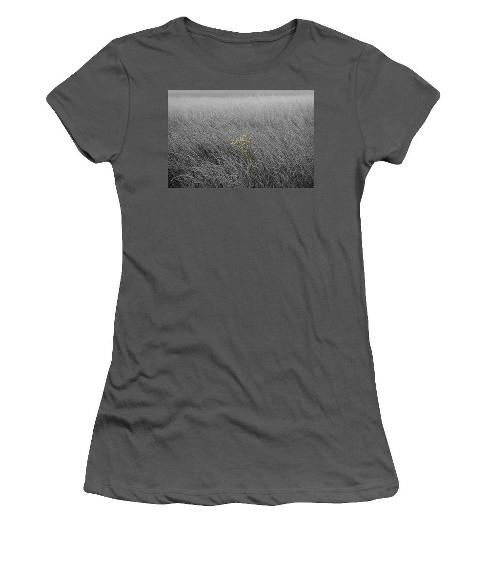Fog Women's T-Shirt (Athletic Fit) featuring the photograph Hay Daisy In The Fog by Eric Liller